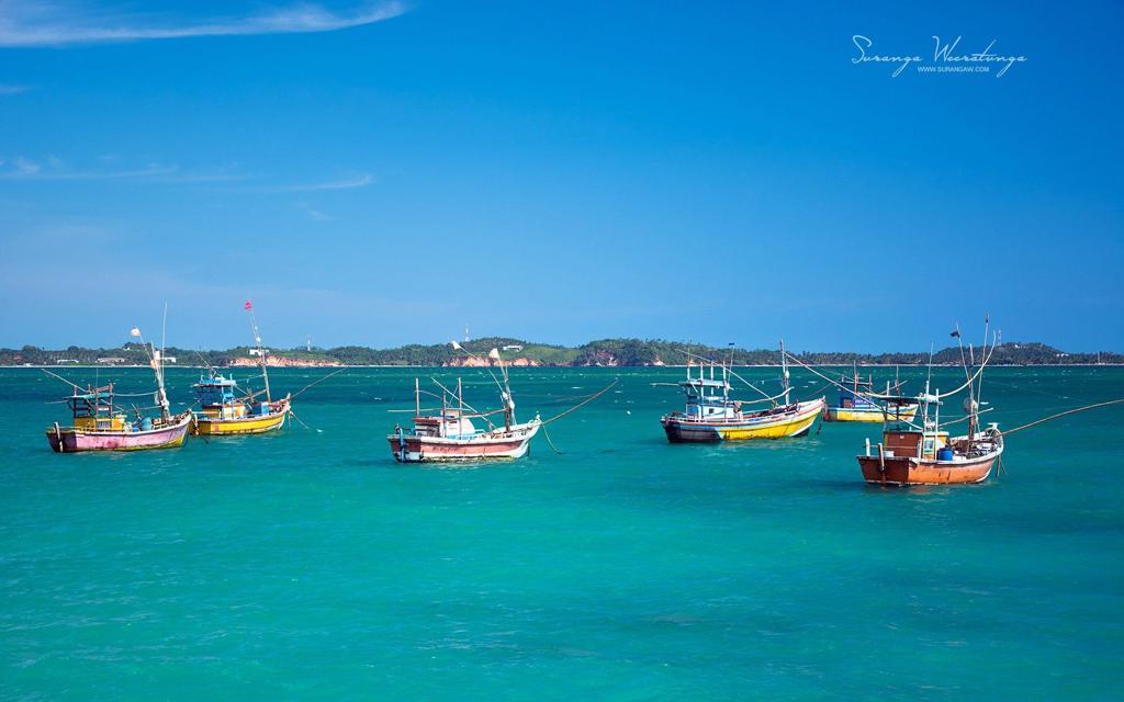 迷人的斯里兰卡旅游自然风景桌面壁纸高清下载