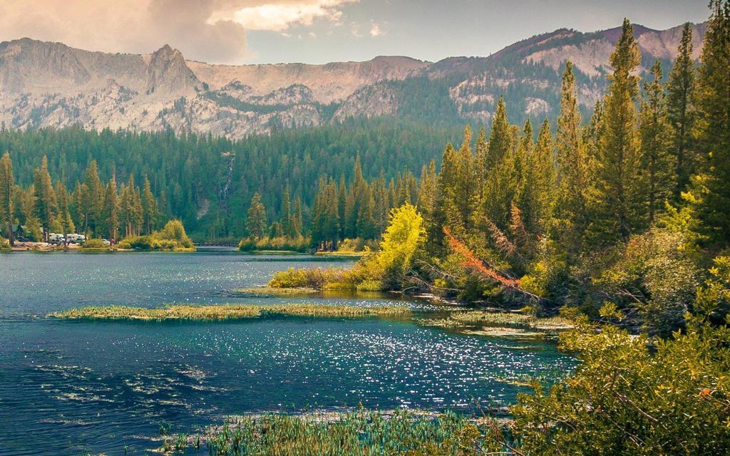 高山树林河水高清风景桌面图片