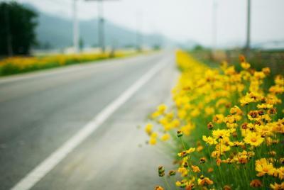 唯美路途意境风景壁纸图片