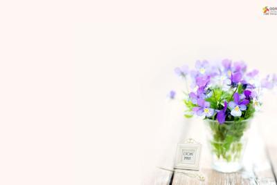 花草植物lomo风格QQ桌面壁纸