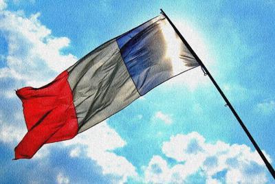 法国高卢雄鸡球队高清壁纸