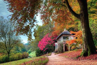 花园中别墅图片高清壁纸下载
