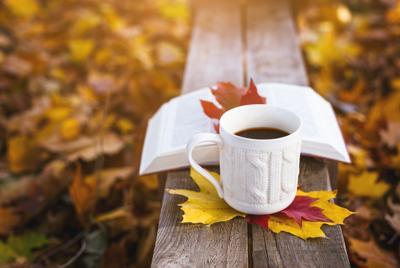 落叶躺椅上的图书咖啡高清唯美壁纸