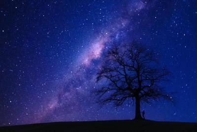 一棵树安谧唯美星空电脑桌面壁纸