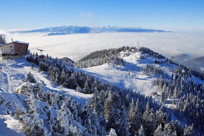 唯美的雪景图片