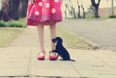 高清可爱小狗抱小女孩腿桌面高清电脑壁纸