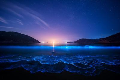 好看的人间仙境晚上 星空 海边 海岸电脑壁纸大图