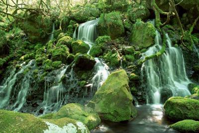 瀑布溪流宽屏风景壁纸