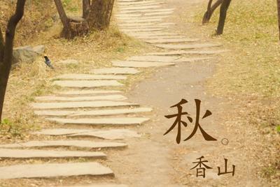 北京香山红叶摄影唯美壁纸