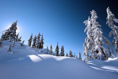 清新唯美的冬季雪景桌面壁纸